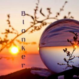 Blonker